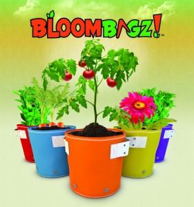 bloombagz